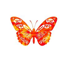 Red & Gold Butterfly Photographic Print