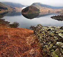 Dry stone wall at Haweswater by Shaun Whiteman