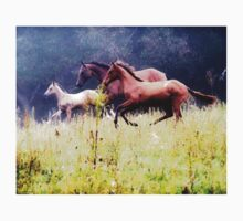 Galloping Horses Photography Kids Clothes