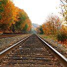 Train Tracks in the Fall by DiamondCactus