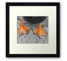 Wet Feet Framed Print