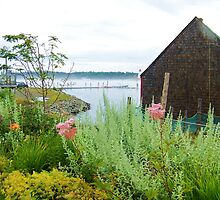 A lovely spot in Lubec, ME by quiltmaker