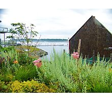 A lovely spot in Lubec, ME Photographic Print