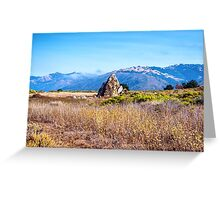 ROCK IN THE MEADOW Greeting Card