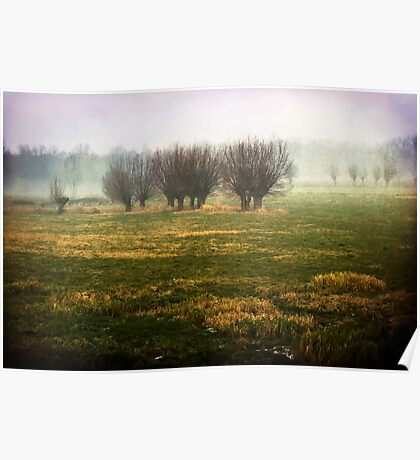 misty willow field Poster