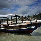 ZANZIBAR - Ship at Kiwengwa beach by Daniela Cifarelli