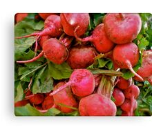 Radishes by the bunch! Canvas Print