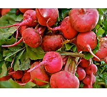 Radishes by the bunch! Photographic Print