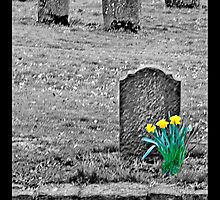 """"""" In a Disused Graveyard """" by John Walsh, IRELAND"""