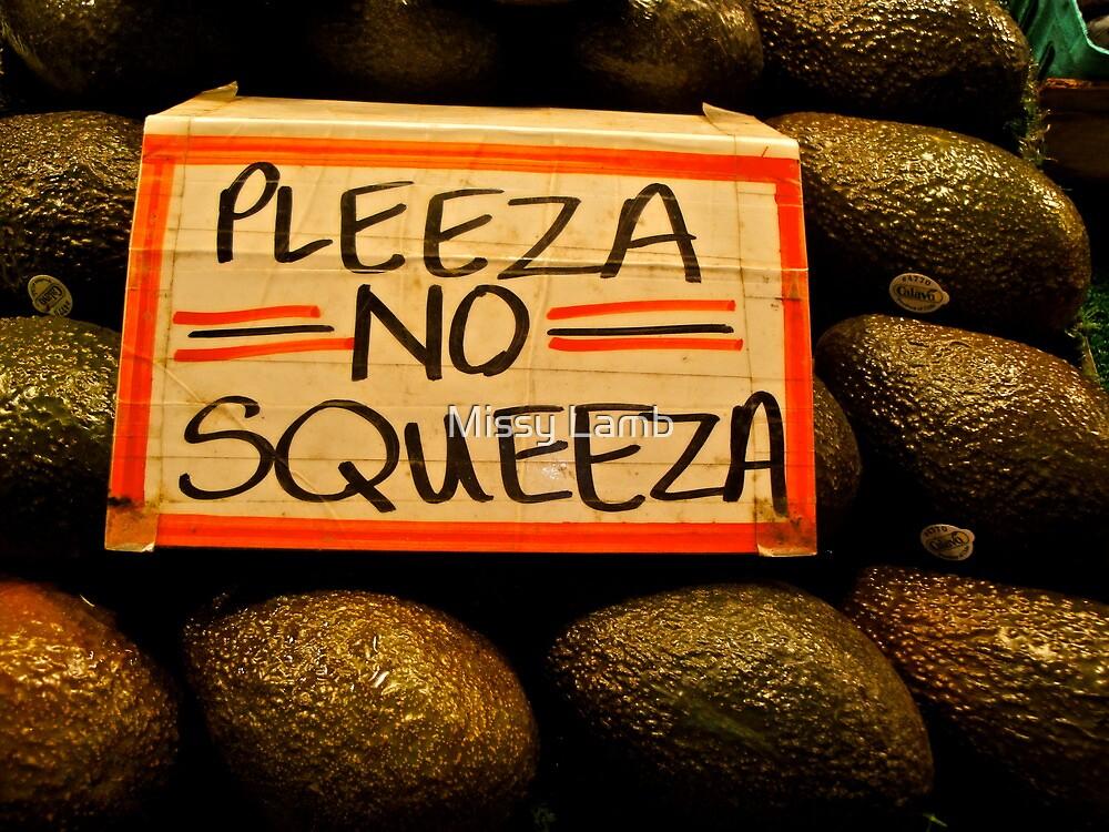 Pleeza No Squeeza! by Missy Lamb