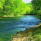 Gorgeous Spring Day On The River by NatureGreeting Cards ©ccwri