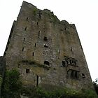 Looking up at Blarney Castle by Pamela McCreight