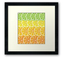 Various Citrus Slices Framed Print