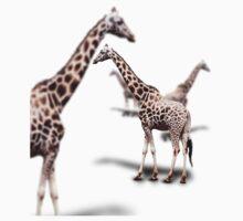 Giraffe on White Baby Tee