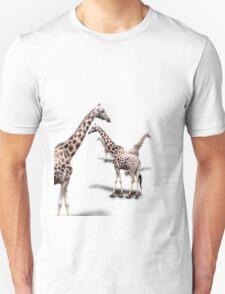 Giraffe on White T-Shirt