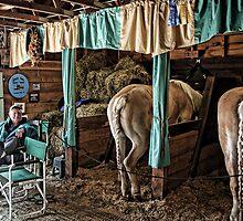 Prize Winning Draft Horses - Fryeburg Fair by T.J. Martin