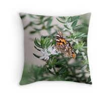 Butterfly - Australia Throw Pillow