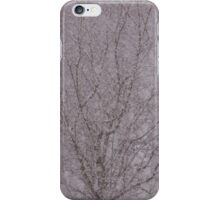 Snowy haiku iPhone Case/Skin