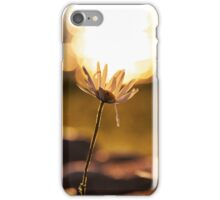 Holding up the sky iPhone Case/Skin