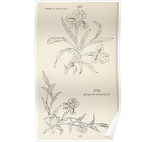 Briggs & Company Patent Transferring Papers Kate Greenaway 1886 0156 Poster