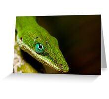 The Turquoise Eye Greeting Card