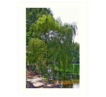 A Walk by the Willows Art Print