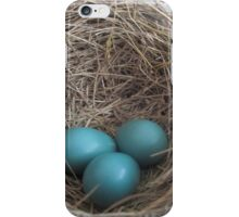 Robin Eggs iPhone Case/Skin