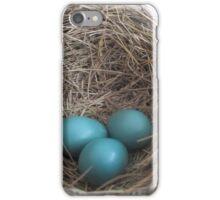 Robin Eggs iPhone Case/Skin