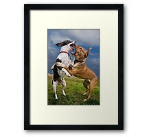 Dogs with game face on .14 Framed Print