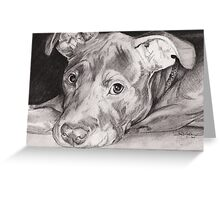 """Thai"" the Red-nose American Pitbull Terrier Greeting Card"