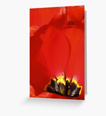 Crumpled Petals Greeting Card