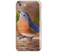 Sweet Little Bluebird iPhone Case/Skin