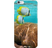 Coral and tropical fish iPhone Case/Skin