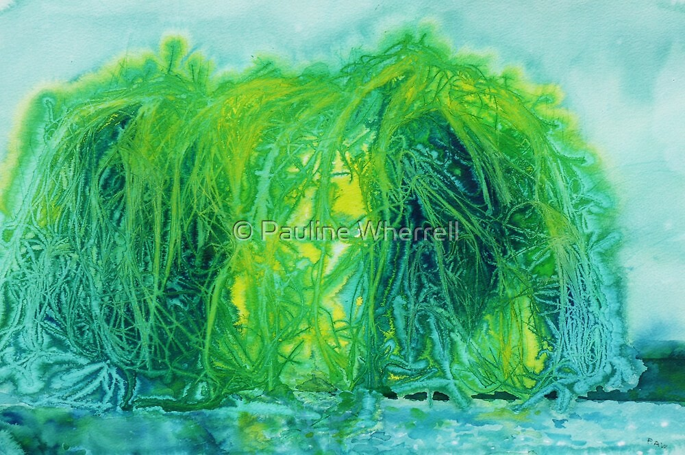Weeping Willow by © Pauline Wherrell