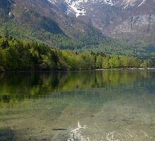 Reflections of the Julian Alps by Ian Middleton