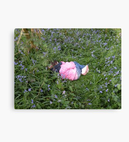 Sleeping in bluebell land...waiting for the fairies Canvas Print