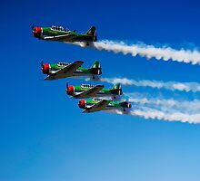 Castrol Flying Lions Harvard Aerobatic Team by RatManDude