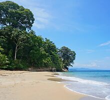 Costa Rica Caribbean beach with lush vegetation by Seaphotoart