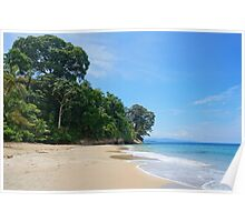 Costa Rica Caribbean beach with lush vegetation Poster