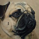 Pretty Pug by Anne Zoutsos