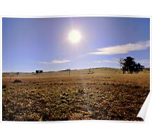 Dry Rural Rathdowny Q.L.D Australia Poster