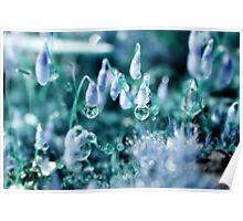 Mystic Crystals Poster