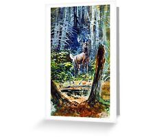 Deer in the dell  Greeting Card