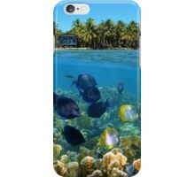 Shoal of fish in a coral reef and tropical shore horizon iPhone Case/Skin
