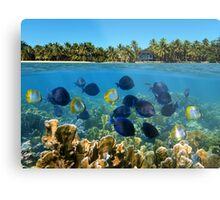 Shoal of fish in a coral reef and tropical shore horizon Metal Print