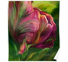 Tulips - Colors Of Paradise 3 Poster
