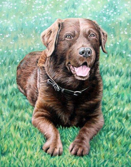 Choco Labrador Retriever by Nicole Zeug