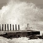 Wave action at Kalk bay by Neil  Bradfield