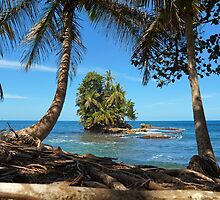 Coconut trees and a lush tropical islet by Seaphotoart