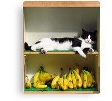 Top Banana Canvas Print